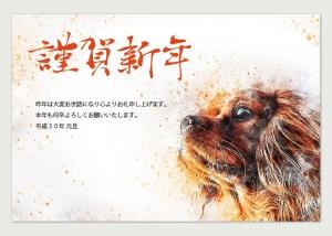 年賀状「朝日を浴びる犬」